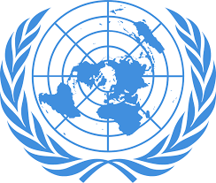In response to the invitation of the United Nations, our organization, BAMRO